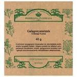 Herbária tea galagonyatermés szálas 40g