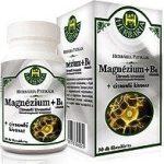 Herbária mg+b6 tabletta citromfű kivonattal 30db