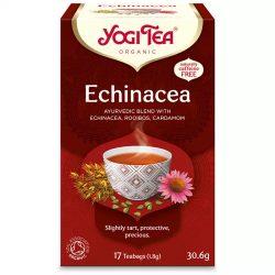 Apotheke tea echinacea+ginko immunerősítő filteres 20db