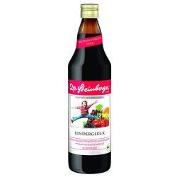 Dr.Steinberger Fekete berkenyelé/Arónia 750 ml