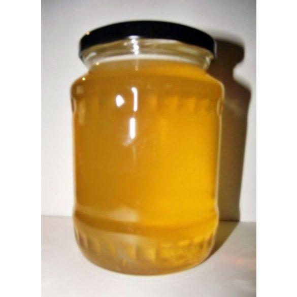 Repce méz-házi termelőtől 1 kg